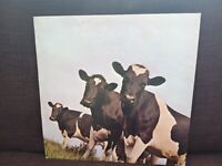 Pink Floyd vinyl albums.