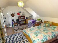 Spacious Double Room with en-suite available from 1st December 2016