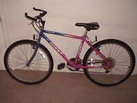 "Giant Stonebreaker 17"" Mountain Bike (will deliver)"