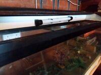 4ft Clear-Seal Fishtank