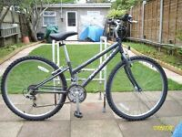 Raleigh Vixen Bicycle