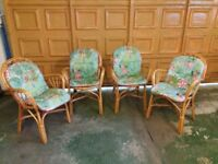 Four Cane Chairs and Cushions