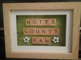NOTTS COUNTY FAN ......PICTURE FRAME £8
