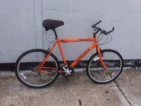 "Mountain bike Large 22"" frame ** i can deliver **"