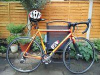 Trek Road Bike with carbon forks + Extras!