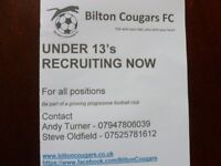 BILTON COUGARS UNDER 13S LOOKING FOR PLAYERS