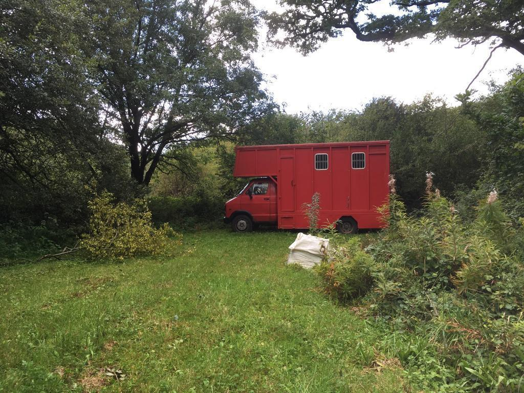 Renault Dodge Horsebox or live in vehicle project
