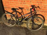 Dawes Misty Ladies Bike. Serviced, Great condition. Free Lock, Lights & Delivery.