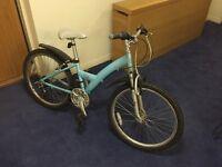 Skye Revolution child/small adult mountain bike