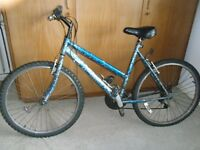Mountain Bike, ladies, needs a clean and some tlc. 2 flat tyres. Painted it but think it's an Apollo