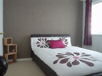 Double bed and mattress - Faux leather - Chocolate Brown.