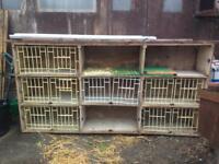 Pigeon breeding boxes