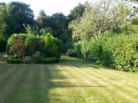 NO TIME TO DO YOUR GARDEN ? don't worry just give us a call.