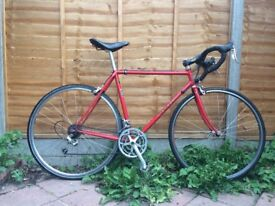 """Mercian Audax fast touring bike 21""""/54cm (centre to top) - Campagnolo Veloce 9 speed groupset"""