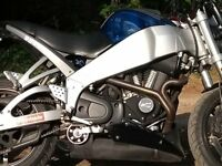 2005 BUELL XB9sx LIGHTENING. VERY GOOD CONDITION, LONG MOT, ONLY 15K MILES. S/HISTORY.