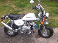 easyrider 49cc