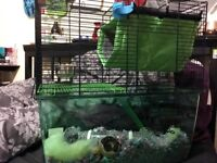 Small animal cage {rats, gerbils, hamsters}