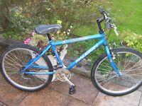"Boys Raleigh bike, 24"" alloy wheels, 14"" frame, 18 gears"