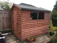 8 x 6ft wooden shed for sale in great condition