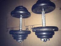 Dumbbells set 2x17.5kg (19)