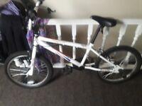 bmx bike dcd 360