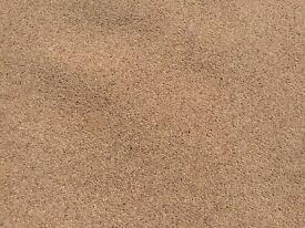 Britons carpet