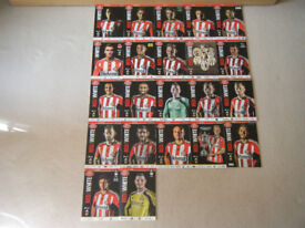 SUNDERLAND AFC MATCHDAY PROGRAMMES 2014-2015 X 22 PLUS OFFICIAL TEAM SHEETS X 22