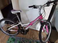 Pink ladys or teenager Bike TREK 220 ALIMINIUM, 21 speeds. BELL. Delivery. Just been serviced.