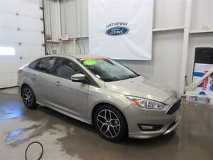 2015 Ford Focus SE - New Car + 3 years pre-paid Maintenance!