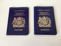 Old style blue passport wallets