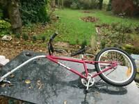Children's Tag Along Bike