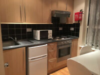 Great studio flat near Stratford Olympic village