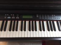 Diginova Electric Piano TG8826