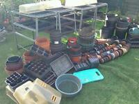 Greenhouse staging and lots of other stuff including trays and flower pots