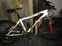 Specialized men's bike bicycle
