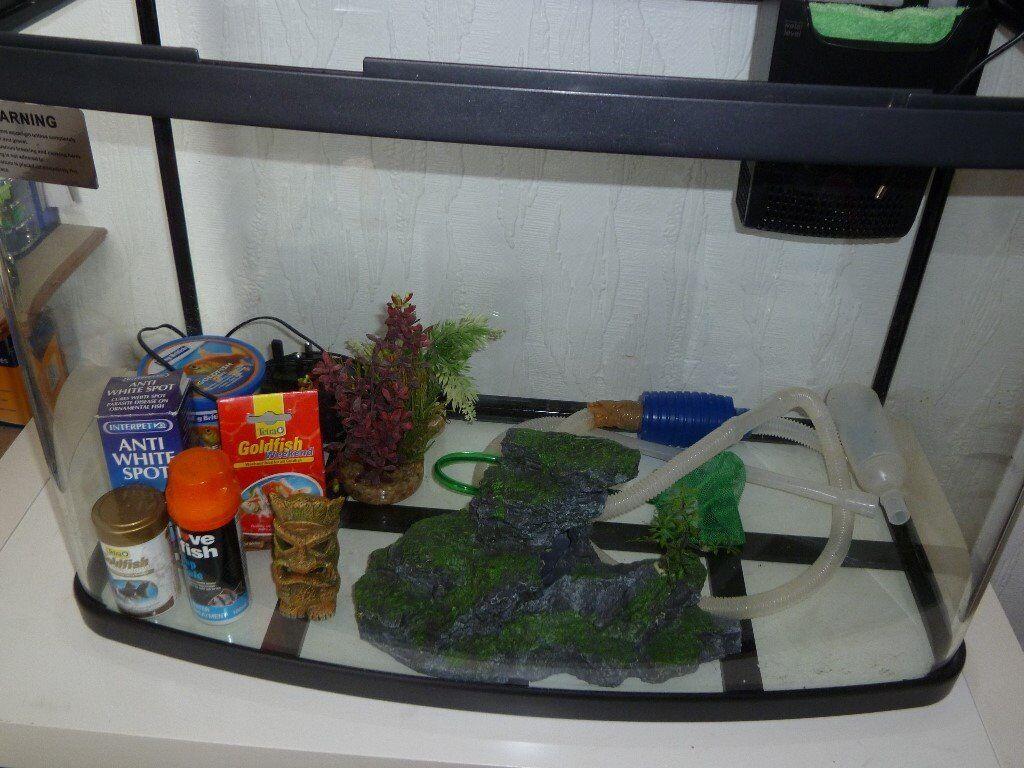 Fish aquarium kidderminster - Fish Aquarium Kidderminster