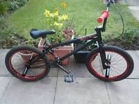 Eon verde BMX