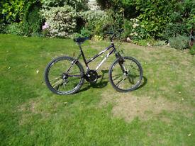 18 speed mountain bike.