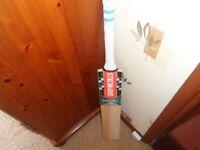 Gray Nicholls Supernova Strike Force Cricket Bat RRP £100