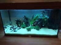 125 ltr Juwel fish tank