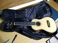 Samich UK-70 Concert Ukele 23 inches + quality Hohner padded bag