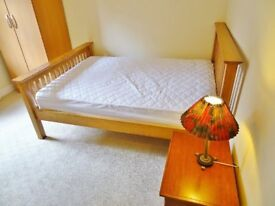 Spacious Room in A Shared Property, Reading Town Centre