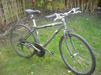 Trek hybrid bike.