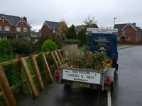 BALLYHOLME GARDENS & TREES FENCING AND DECKING/TREE SURGEON/TREE SERVICES/TREE CARE