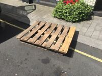free pallet 100cm x 120cm