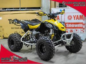 2014 Can-Am DS 450 X