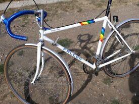 Falcon racing bike