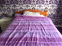 Double room for single female occupant only