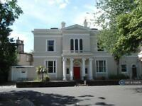 1 bedroom in Windermere Terrace, Liverpool L8 3Sb, L8