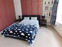 6 rooms in one house, Pets welcome, great location